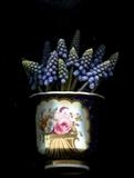 Still life with muscari by bronwen coe, Photography